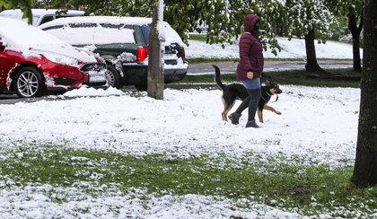 W Polsce spadł śnieg!
