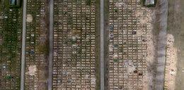 Na polskich cmentarzach kopią setki grobów. Tu spoczną ofiary COVID-19 [WIDEO i ZDJĘCIA]