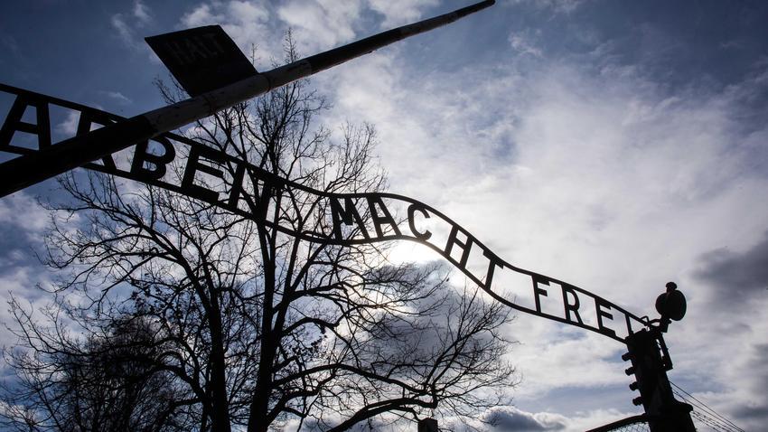 Izraelczyk nasikał na pomnik w Auschwitz. Teraz sam prosi o karę
