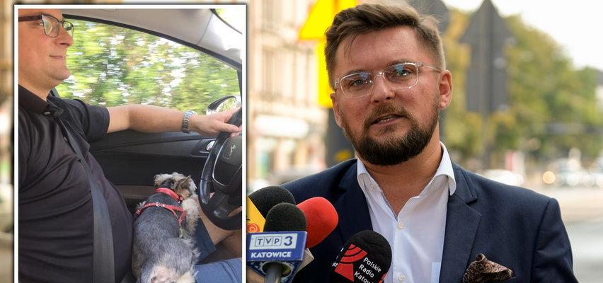 """Prezydent Katowic wozi pieska na kolanach. Internauci są wściekli. """"Podczas ostrego hamowania z pieska zostanie pomidorowa"""""""