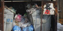Rewolucja śmieciowa