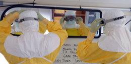 Naukowcy: Ebola w Europie to kwestia czasu