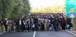 """Polski rząd mówił """"nie"""" imigrantom. Bruksela już nie upomina, ale działa!"""