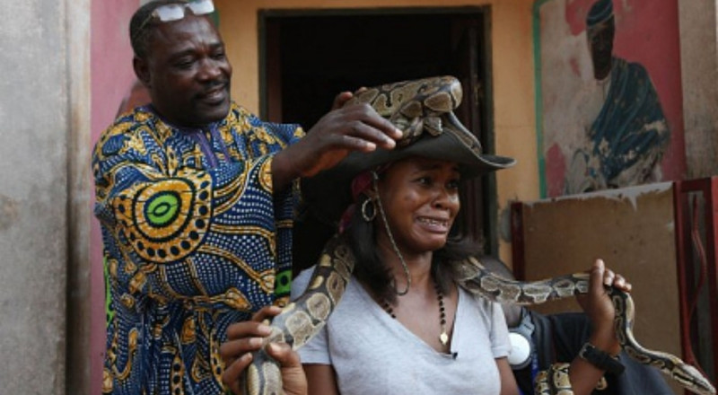 The Python: A reverred symbol of worship in Nigeria