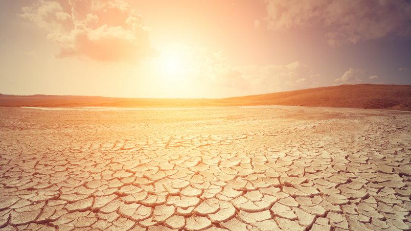 Jeśli nie zaprzestaniemy emisji dwutlenku węgla do atmosfery, w okolicach 2100 roku strefa umiarkowana będzie umiarkowana już tylko z nazwy.