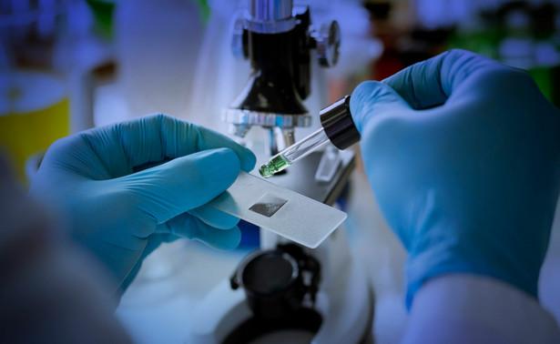 Glizyryna okazała się działać poprzez hamowanie aktywności wirusowego enzymu – proteazy Mpro
