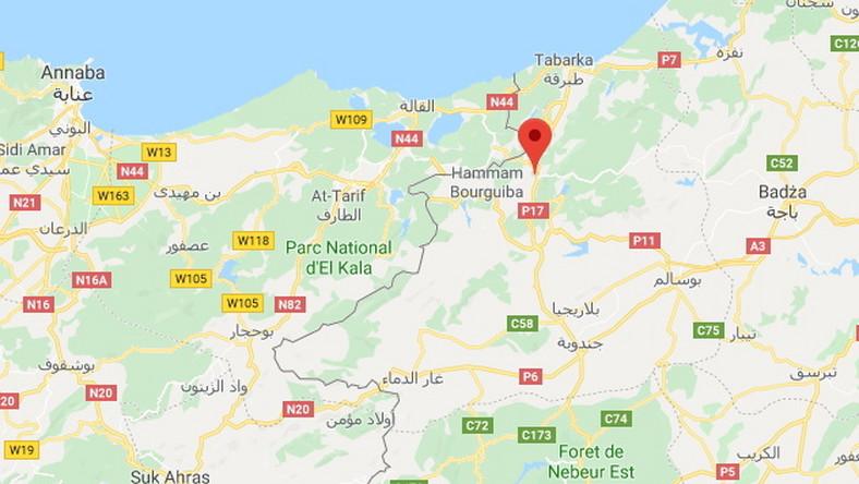 Tunezja Polityczna Mapa Ilustracja Wektor Ilustracja Zlozonej Z