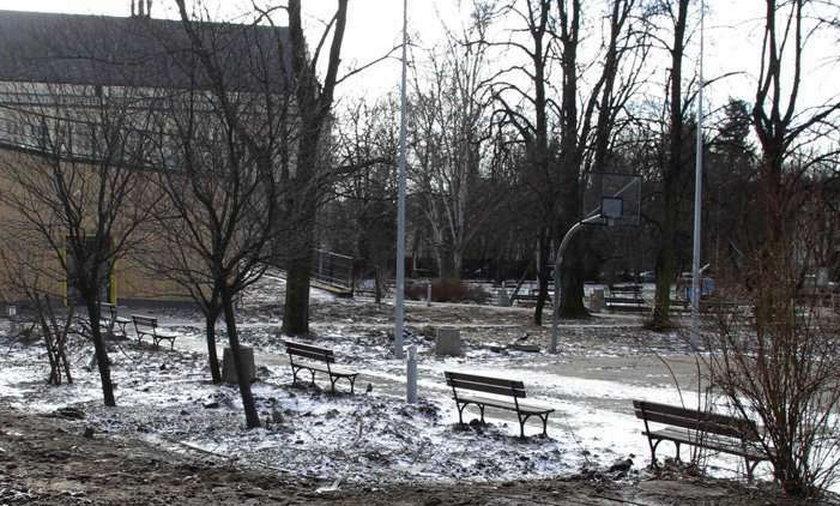 Park w remoncie