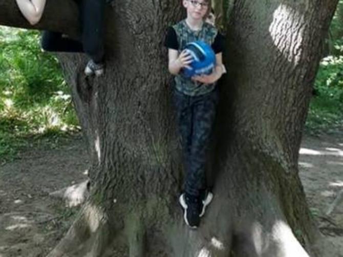 Slikala sam decu na drvetu i tek kod kuće primetila ŠTA SE ZAISTA DEŠAVA na slici: Nismo mogli da ZASPIMO od straha