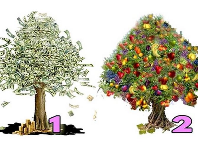 Izaberite SLIKU i saznajte da li ćete IMATI PUNO NOVCA i kada vam tačno pare dolaze u život!