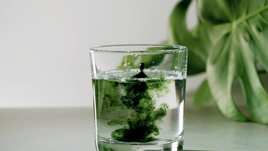 Chlorofil jest powszechnie występującym w roślinach zielonym barwnikiem