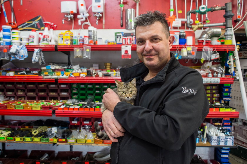 Kot zamieszkał w sklepie w Krakowie