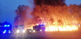 Pożar dwóch składowisk odpadów w Grabowie pod Łęczycą. Jest śledztwo prokuratury!