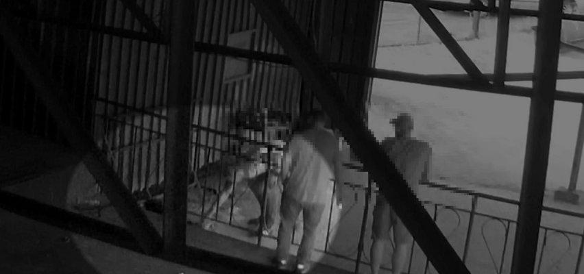 Znęcał się nad kotem, zwierzę nie przeżyło. Wszystko nagrał monitoring. Teraz sadysta może trafić za kratki