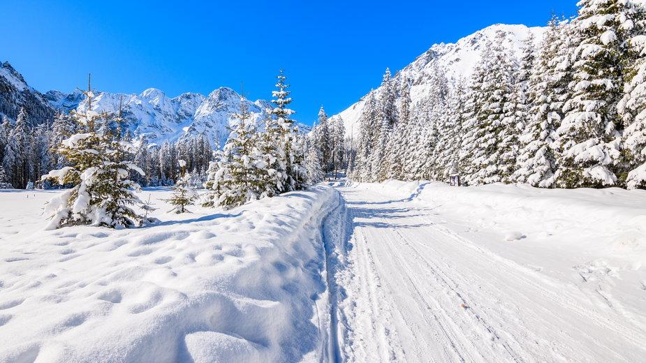 Pogoda na święta: Prognoza pogody na Boże Narodzenie. Będzie śnieg?