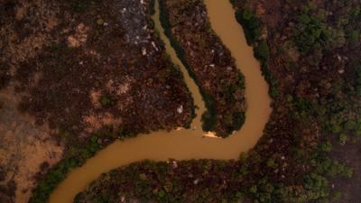 Desperate race against fires in world's biggest tropical wetlands