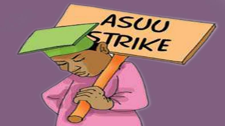 An image depicting the strike action by ASUU. Photo: Pulse