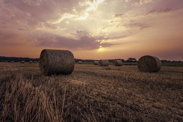 Z prowadzeniem gospodarstwa rolnego wiąże się konieczność zaciągania zobowiązań.