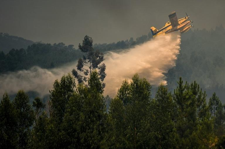 A plane drops water over a wildfire at Relva in central Portugal on July 21