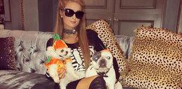 Rajskie życie Paris Hilton. Mieszka jak księżniczka