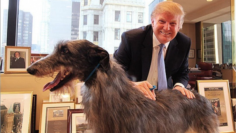 President Trump bans eating of dogs and cat in U.S.
