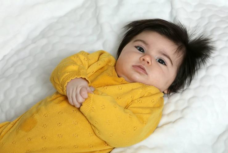 beba kim džong un