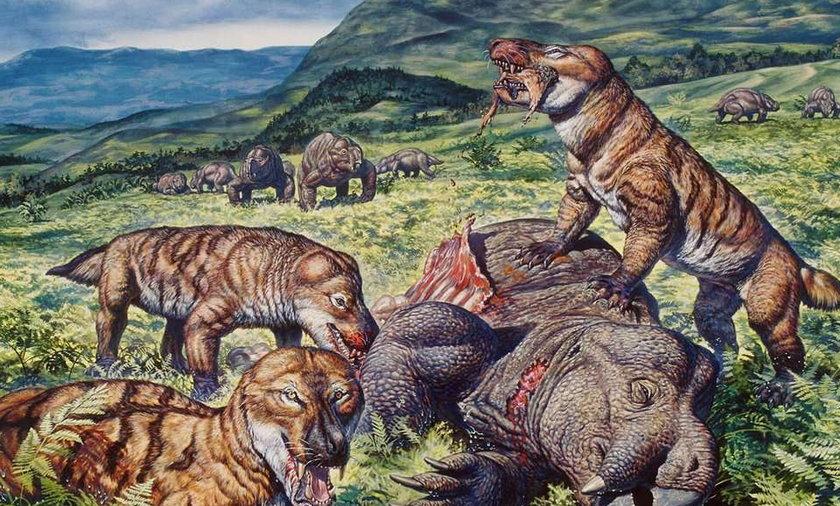 Dinozaur mieszkał pod Zawierciem!