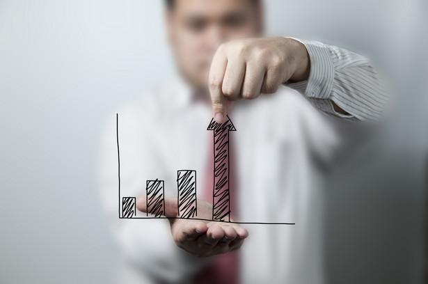 Rodzimy biznes najczęściej sprawdza firmy z Niemiec