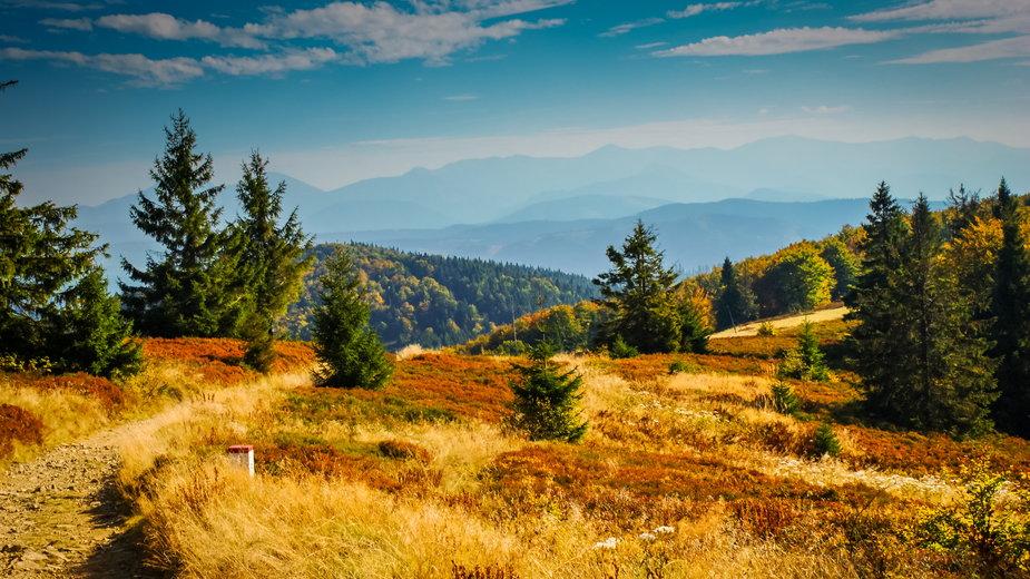 Beskid Śląski: najpiękniejsze szczyty i szlaki. Co warto zobaczyć?