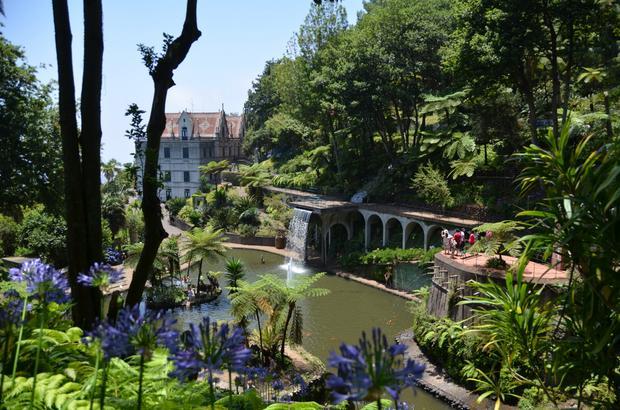 Ogród Tropikalny na Monte