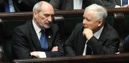 Misiewicz wróci! Macierewicz sprzeciwi się Kaczyńskiemu?
