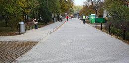 Łojewska będzie jak autostrada