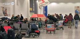 Migranci rozczarowani Belgią. Masowo uciekają do rodzinnego kraju