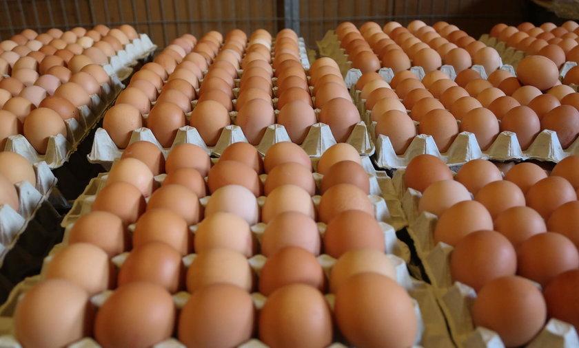 Znaleziono kolejne jaja z salmonellą. Sanepid ostrzega