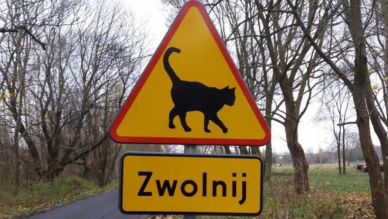 Znak stanął przy wjeździe do miejscowości
