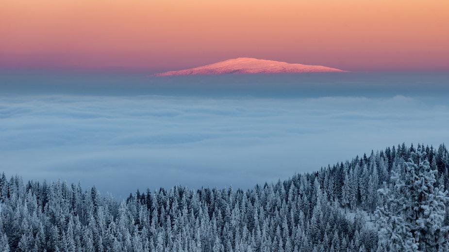 Babia Góra - ciekawostki, popularne szlaki, jak wejść, przewodnik i bezpieczeństwo
