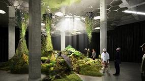 Władze Nowego Jorku zatwierdziły podziemny park