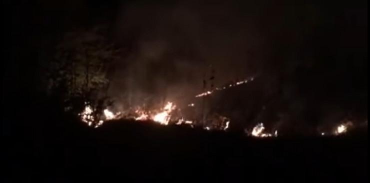 Fruska gora požar