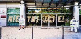 """""""Nie tnijcie!"""" Aktywiści Greenpeace wzywają do ochrony najcenniejszych polskich lasów"""