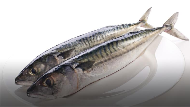 10 ryb najlepszych dla zdrowia
