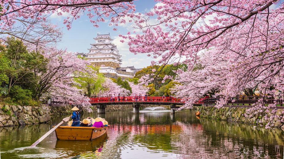 Ciekawostki na temat Japonii
