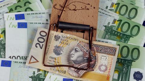 Euro w Polsce ma swoje plusy i minusy. Warto je dokładnie poznać