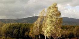Pogoda na pierwszy październikowy weekend. Na chwilę wrócą upały? IMGW ostrzega przed silnym wiatrem!