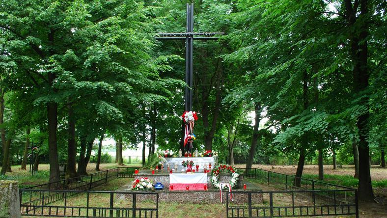 Krzyż na zbiorowej mogile Polaków wymordowanych przez UPA w Hucie Stepańskiej na Wołyniu, fot. Janusz Horoszkiewicz