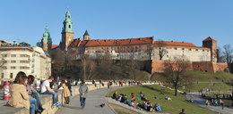 Piknik rodzinny pod Wawelem