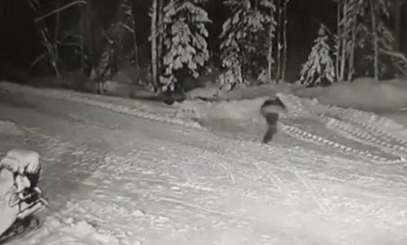Na nagraniu widać 10-latka i czającego się w nocy wilka