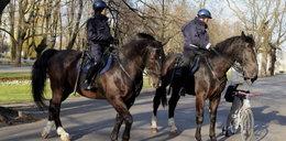 Policyjne patrole
