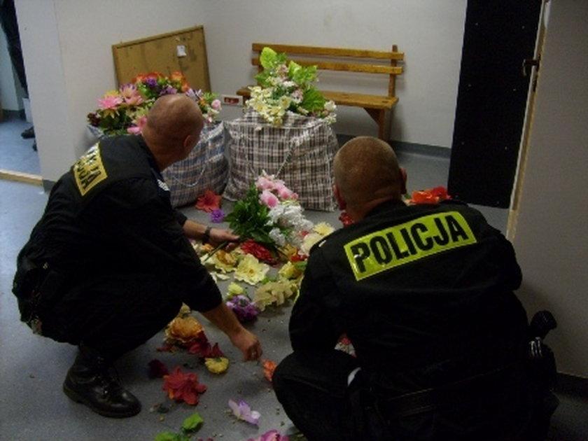 Hiena cmentarna kradła kwiaty w Zgierzu