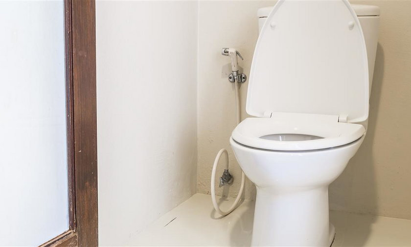 Program budowy toalet