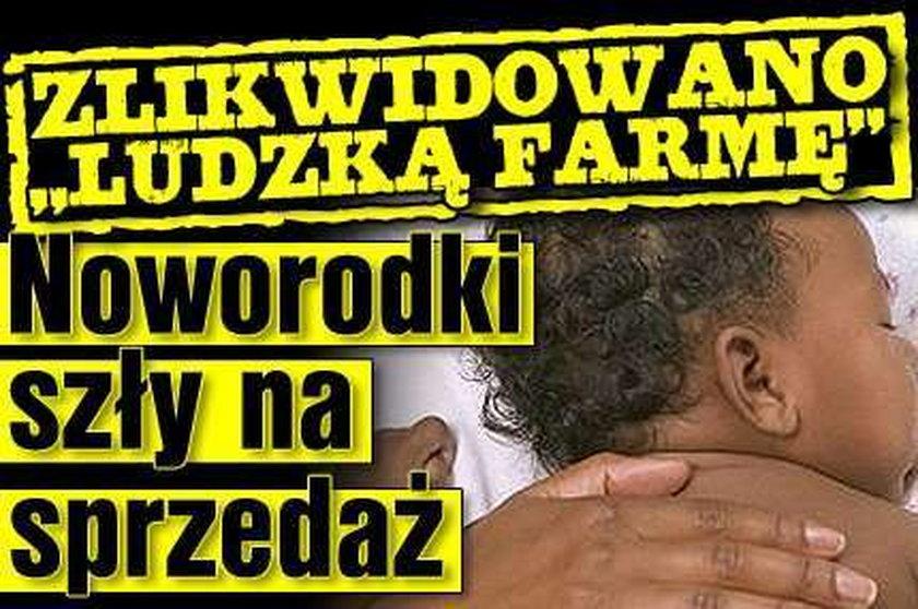"""Zlikwidowano """"ludzką farmę"""". Noworodki szły na sprzedaż"""